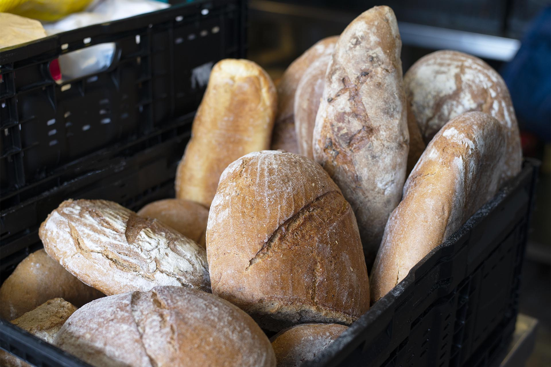 Langener Tafel Langen Lebensmittel retten Menschen helfen Geldspende Sponsoren